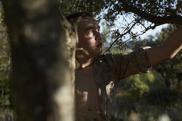 France, teenage boy climbing in tree - AMEF00010