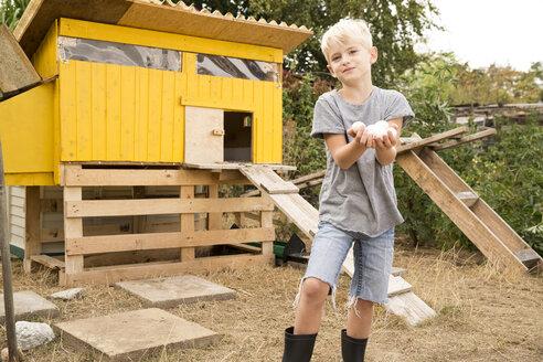 Portrait of boy holding eggs at chickenhouse in garden - MFRF01242