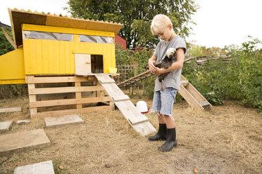 Boy holding Polish chicken at chickenhouse in garden - MFRF01260
