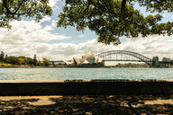 Australia, New South Wales, Sydney, landscape with Sydney bridge and opera house - KIJF02348