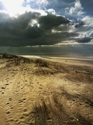 Belgium, Flanders, North Sea, beach and dunes with sunbeams in thunderstorm conditions - GWF05920