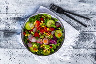 Mixed salad with red radish, cucumber, bell pepper, tomato, maize and carrot - SARF04135