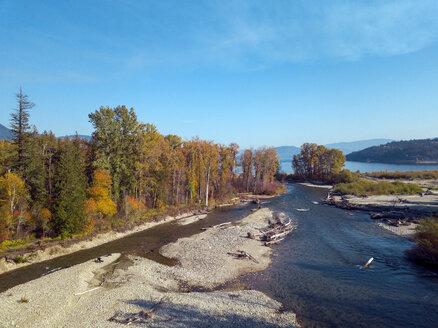 Canada, British Columbia, Aerial view of Adams River during salmon run in autumn - GNF01430