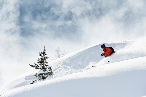 Male skier skiing down snow covered mountain, Alpe-d'Huez, Rhone-Alpes, France - CUF49659