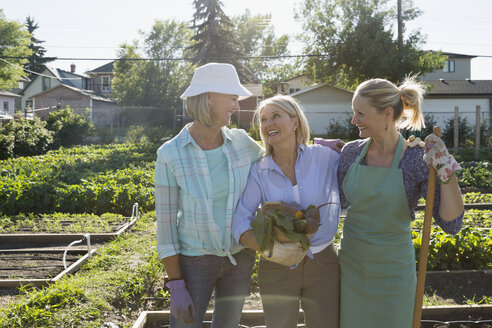 Smiling women in sunny community vegetable garden - HEROF28413