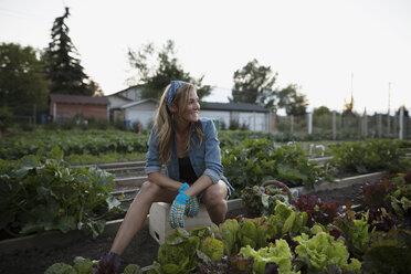 Smiling woman in vegetable garden - HEROF28422