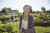 Smiling young woman tending sunny community vegetable garden - HEROF28431