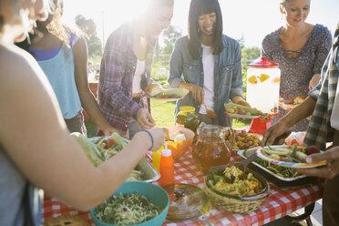 Smiling neighbors around potluck table in sunny park - HEROF28437