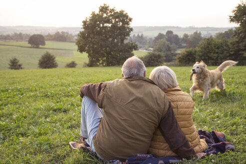 Back view of senior couple sitting on a meadow at sunset watching their dog playing - MAMF00480