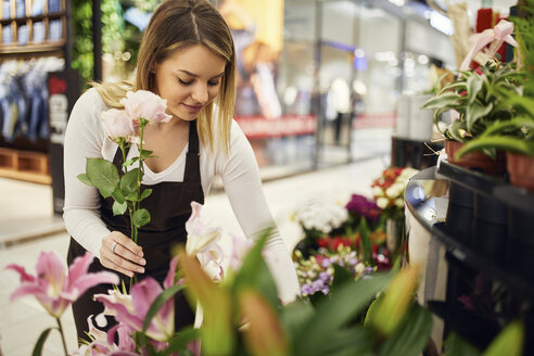 Florist arranging flowers in flower shop - ZEDF01975