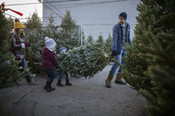 Father and children carrying Christmas tree at Christmas market - HEROF28547