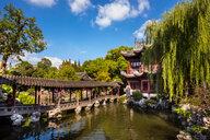 Pavilion of Listening to Billows in Yu Garden, Shanghai, China - CUF49815