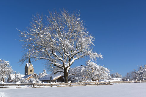 Germany, Upper Bavaria, Peretshofen, winter landscape - LHF00608