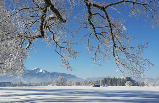 Germany, Upper Bavaria, Benediktbeuern, winter landscape - LHF00611