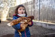 Portrait of amazed toddler girl holding chicken - GEMF02903