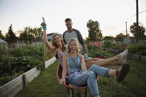Playful women riding in wheelbarrow in garden - HEROF28756