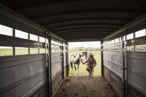 Female rancher loading horse into horse trailer - HEROF28819
