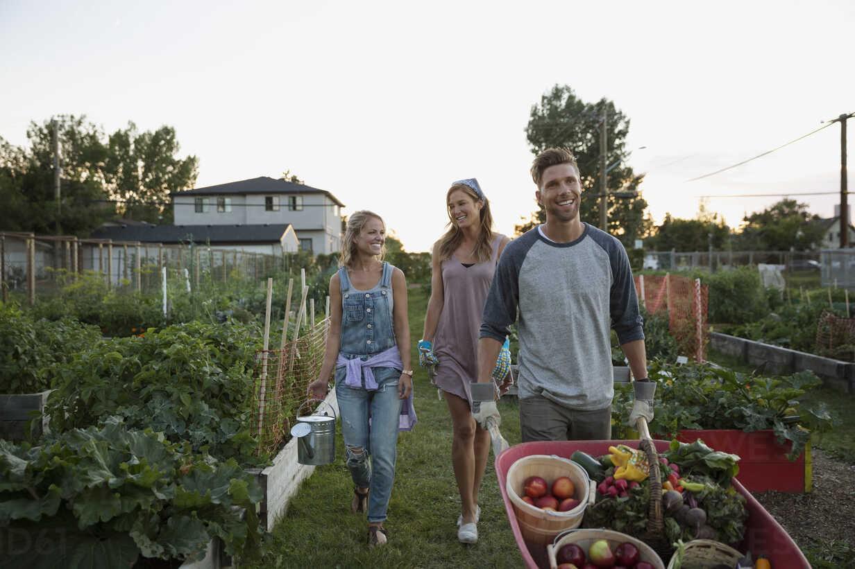 Friends harvesting vegetables in community garden - HEROF28849 - Hero Images/Westend61