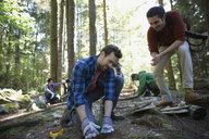 Volunteers planting trees in woods - HEROF29927