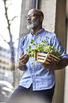 Mature businessman holding plants looking out of window - FMKF05491