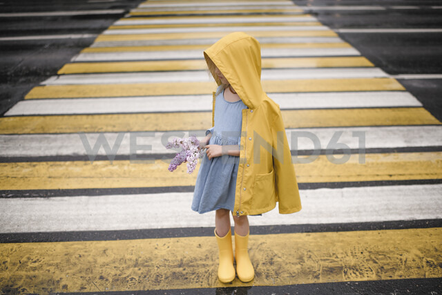 Girl wearing yellow rainjacket, standing on zebra crossing, holding lilac - EYAF00015 - Ekaterina Yakunina/Westend61