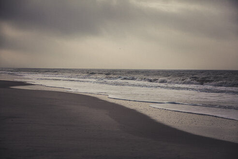 Germany, Sylt, Kampen, lonely beach, sea, winter - ANHF00086