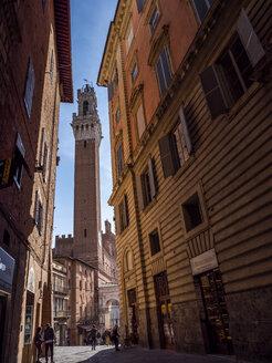 Italien, Toscana,  Siena, Piazza del Campo, Torre del Mangia - LAF02239