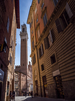 Italy, Tuscany, Siena, Piazza del Campo, Torre del Mangia - LAF02239