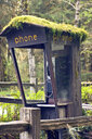 Moss Covered Phone Booth - MINF10888