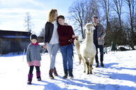 Family walking with alpaca on a field in winter - ECPF00560