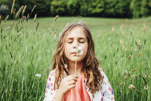 Portrait of girl with blowball on a meadow - ANHF00098