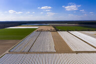 Germany, Hesse, Aerial view of asparagus field with white plane - AMF06857