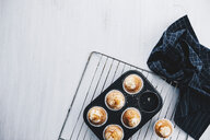 Home-baked muffins in muffin tray - ERRF00808