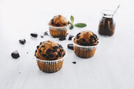 Home-baked muffins with chocolate chips - ERRF00826