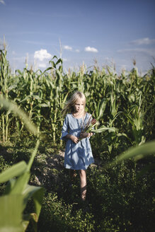 Blond girl standing in a cornfield - EYAF00037