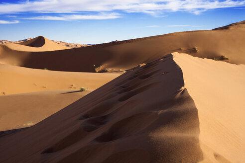 Morocco, Sahara, Merzouga, Erg Chebbi, desert dune - PSTF00402