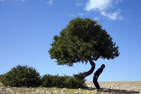 Morocco, Sidi Kaouki, man wearing a bowler hat standing crooked at a tree - PSTF00420