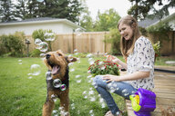 Curious dog playing with bubbles in backyard - HEROF31088