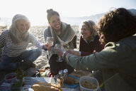 Women friends toasting wine glasses at beach picnic - HEROF31711