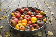 Still life variety fresh organic tomatoes in bowl - HEROF31729