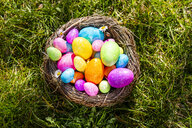Multicolored Easter eggs in a nest on grass - SARF04198