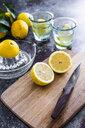 Glasses of homemade lemonade - GIOF05896