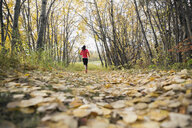 Woman jogging on path in autumn park - HEROF32630
