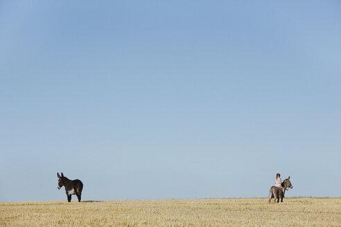 Girl riding donkey in sunny rural field - FSIF03831