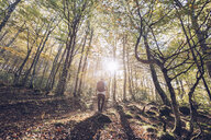 Spain, Navarra, Irati Forest, young man standing in lush forest - RSGF00137