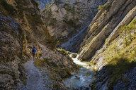 Austria, Tyrol, Karwendel mountains, Gleirschklamm, Gleirschbach - SIEF08493
