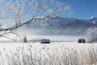 Germany, Upper Bavaria, Werdenfelser Land, Kochel, winter landscape, shack - LHF00626