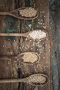 Oats, spelt, barley and buckweath on spoons - GIOF05941