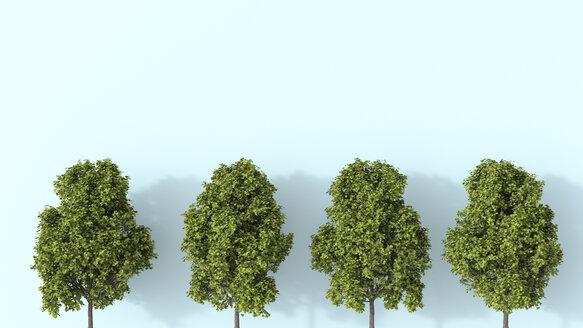 3D rendering, Row of summer trees - UWF01531