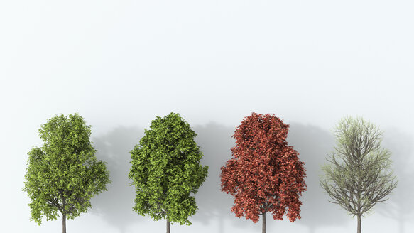 3D rendering, Tree in the four seasons - UWF01534